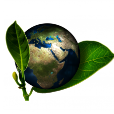 Loi relative à la transition énergétique